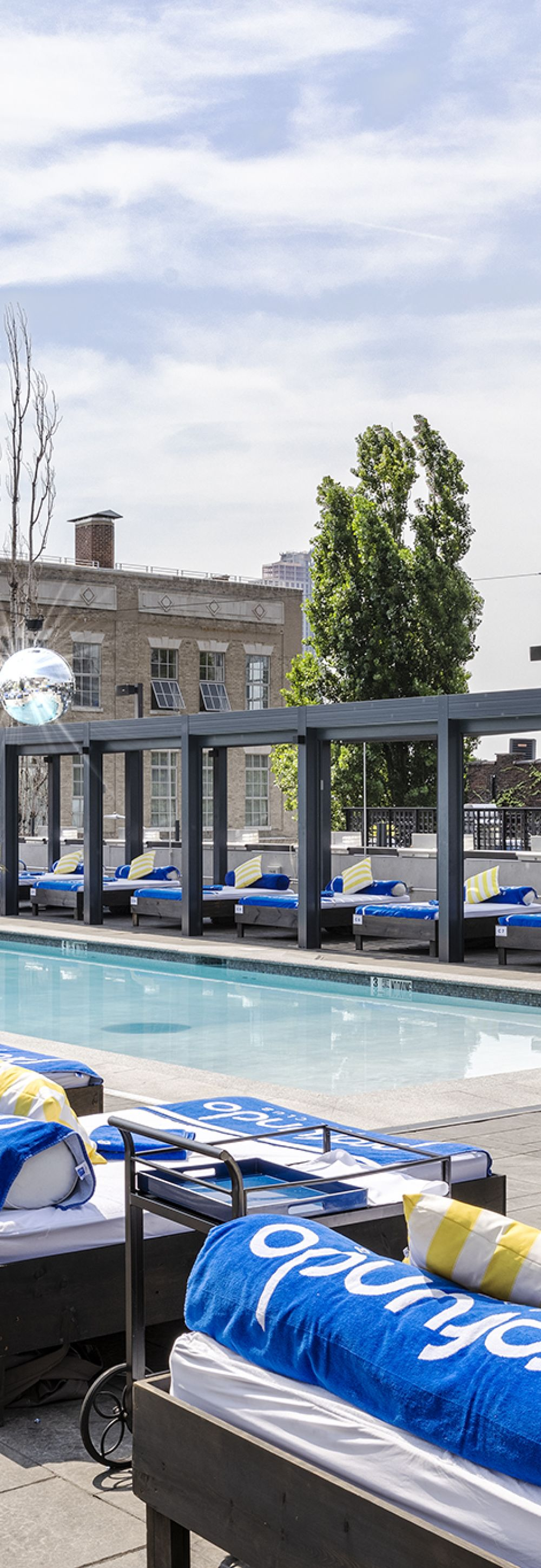 Side View of Lounge Chairs and Planters Surround the Rooftop Pool at Profundo Day Club in Ravel Hotel in LIC